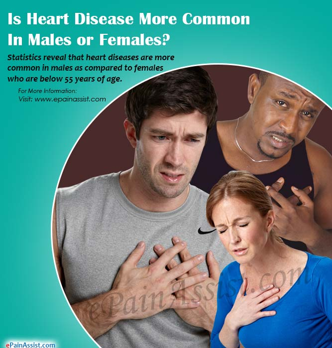 Is Heart Disease More Common in Males or Females?