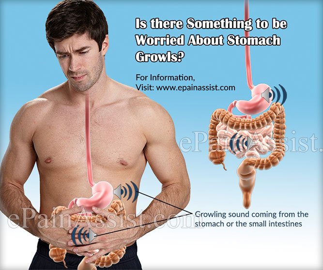 Is there Something to be Worried About Stomach Growls?