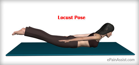 Locust Pose or Shalabhasana for Lower Back Pain Relief