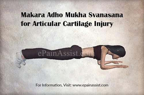 Makara Adho Mukha Svanasana for Articular Cartilage Injury