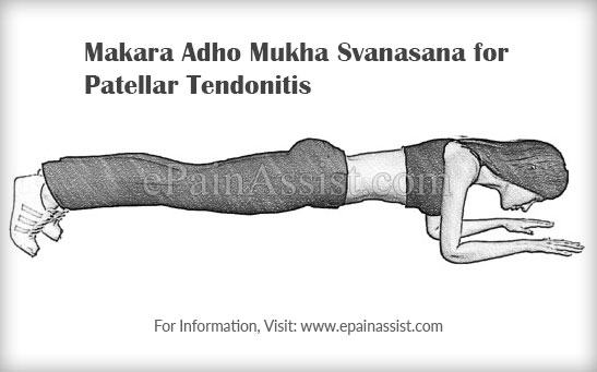 Makara Adho Mukha Svanasana or The Dolphin Plank Pose for Patellar Tendonitis