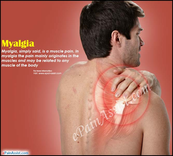 picture Causes of Back Pain