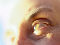 Changes in sight could  signal disease a decade before motor symptoms surface, study suggests.