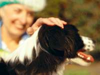 And here are tips to help choose the right pet for you.