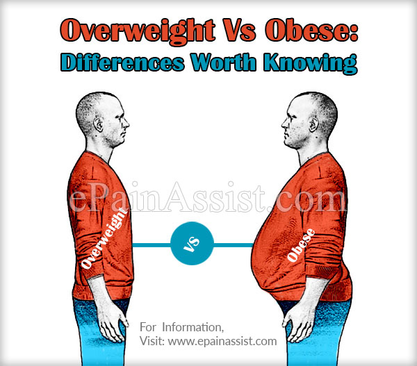 Overweight Vs Obese: Differences Worth Knowing