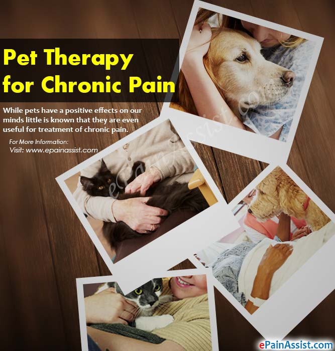 Pet Therapy for Chronic Pain