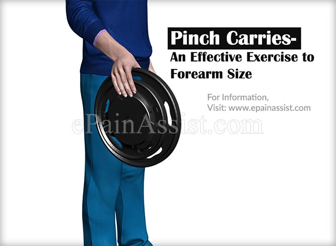 Pinch Carries-An Effective Exercise to Forearm Size