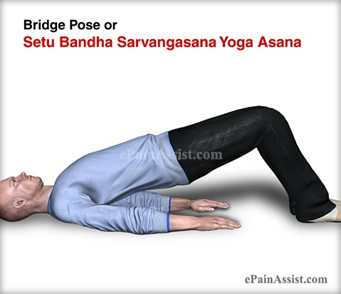 Bridge Pose or Setu Bandha Sarvangasana Yoga Asana and its Benefits for Men