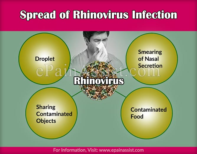 Spread of Rhinovirus Infection or Common Cold Virus
