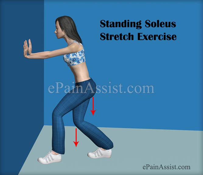 Standing Soleus Stretch Exercise For Ankle Joint Ligament Injury!