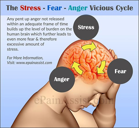 The Stress – Fear - Anger Vicious Cycle
