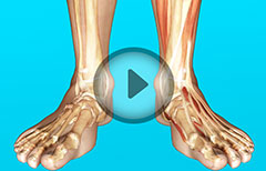 Ankle Joint Therapeutic Arthroscopy: Arthroscopic Surgery, Examination, Treatment