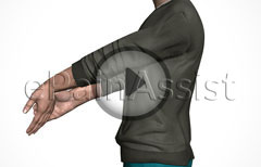Exercises for Tennis Elbow, Stretching, Strengthening