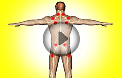Watch How Fibromyalgia is Diagnosed and Also know its Symptoms and Causes