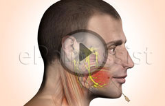 Trigeminal Neuralgia and Its Injection Treatment