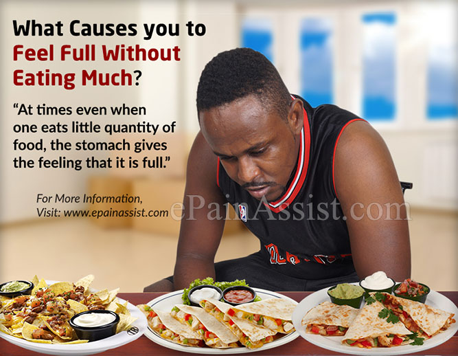What Causes you to Feel Full Without Eating Much?