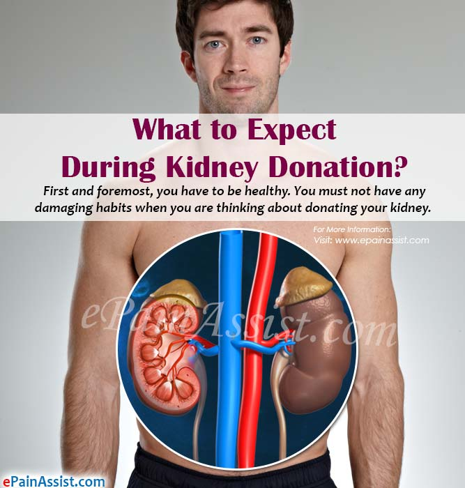 What to Expect During Kidney Donation?