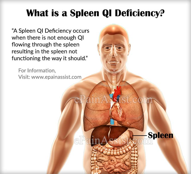 What is a Spleen QI Deficiency?