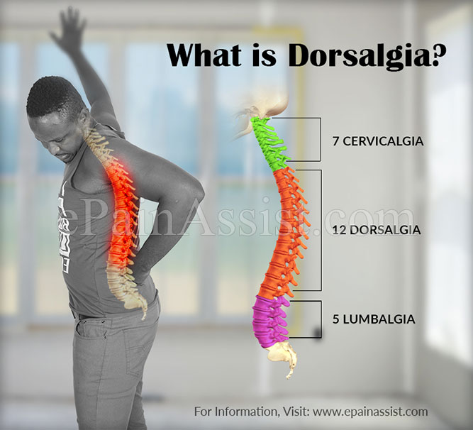 What is Dorsalgia?