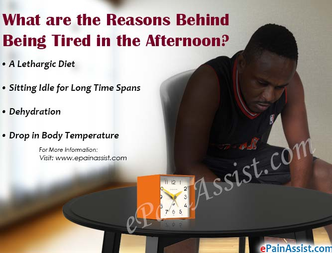 What are the Reasons Behind Being Tired in the Afternoon?
