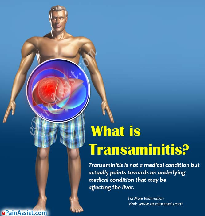What is Transaminitis?