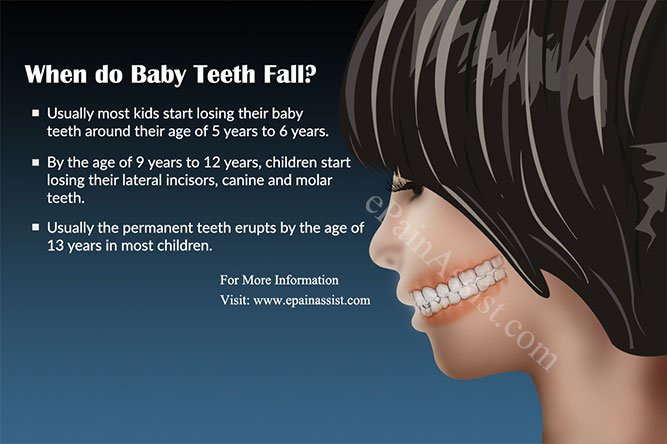 When do Baby Teeth Fall?